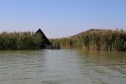 Seehütten in Rust | Neusiedler See - Burgenland | seehuette.COM