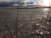 Rust im Winter - Seehütten - Eislaufen am Neusiedler See